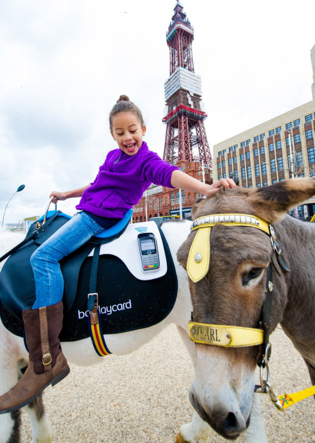 21st August 2014 - Blackpool: Cashless Donkey rides come to Blackpool Beach