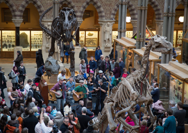 Museum of Natural History, Oxford