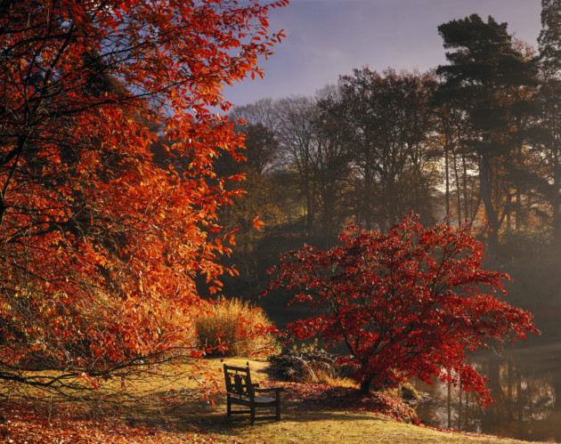 Sheffield Park, East Sussex. ©National Trust Images/Andrew Butler