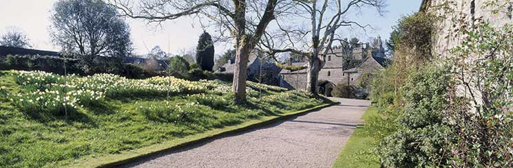 Cotehele. Credit: National Trust/Andrea Jones