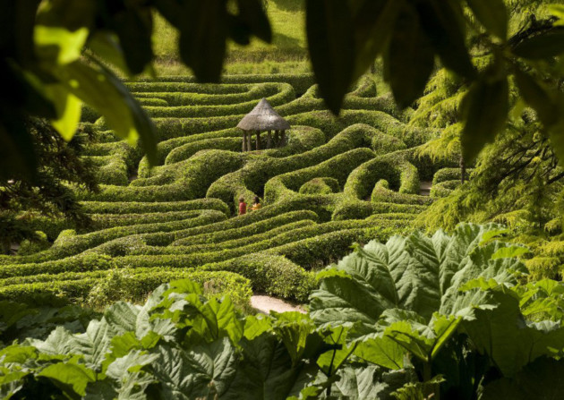 The laurel maze, Glendurgan Garden, Cornwall. ©National Trust Images/John Millar