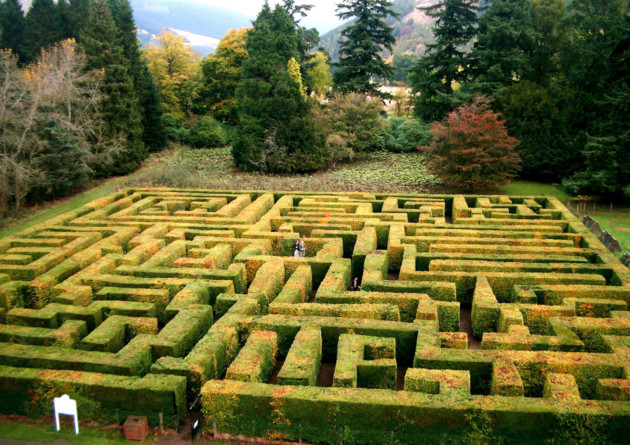 Traquair Maze, Scotland