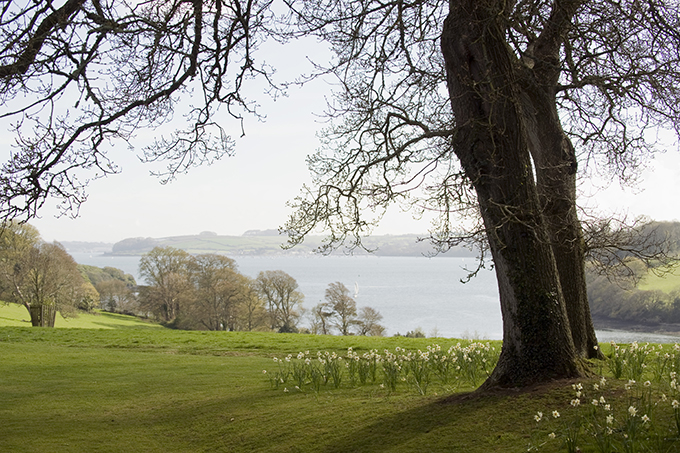 View towards River Fal and the sea from Trelissick Gardens, Cornwall. Credit: VisitBritain/NTPL