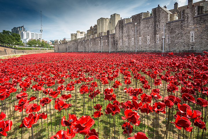 Tower Of London Poppies Go On Tour Discover Britain - Tower of london river of poppies