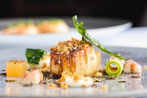 Jersey scallops are on menu at Bohemia. Credit: VisualCulture