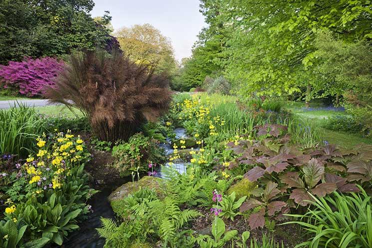 Trengwainton-Garden-©National-Trust-ImagesAndrew-Butler.jpg