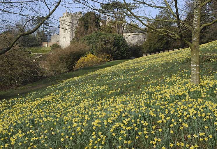 Sizergh, national trust, spring gardens