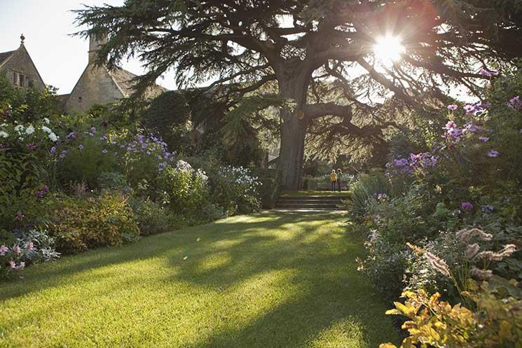 Hidcote garden, national trust