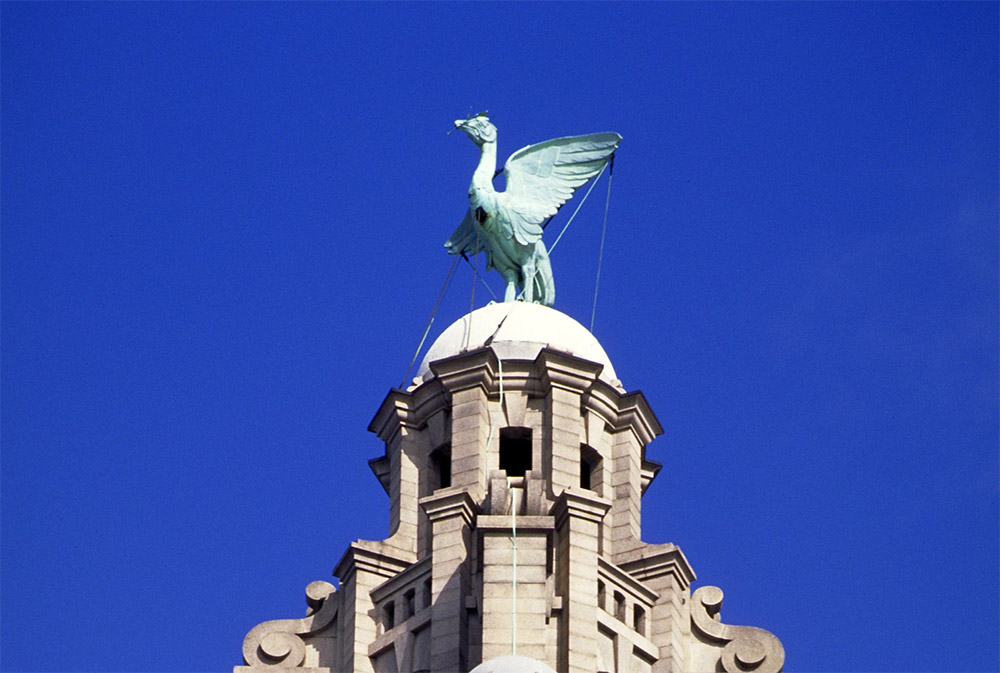 WEB Liver bird of Liverpool