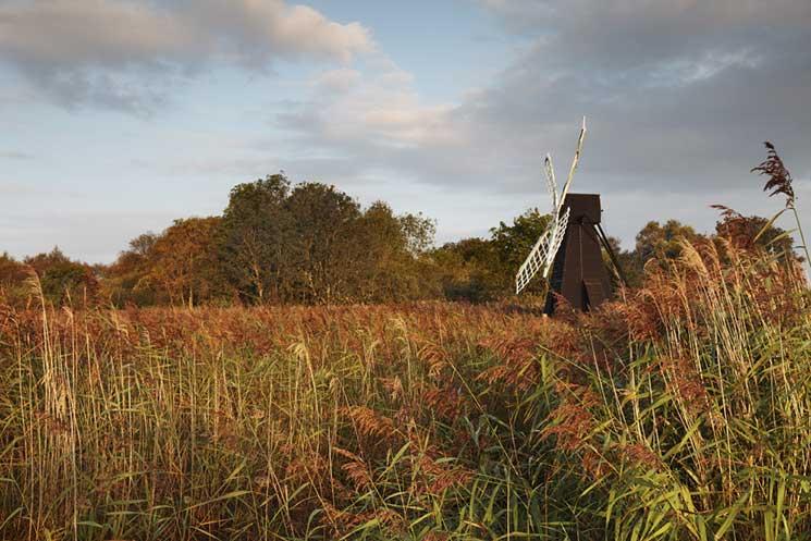 Wicken Fen,Cambridgeshire