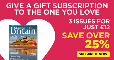 Valentine's Day gift subscription offer