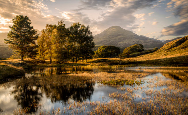 Chris Shepherd – 'Old Man in the Trees' Kelly Hall Tarn, Cumbria. Landscape Photographer of the Year awards