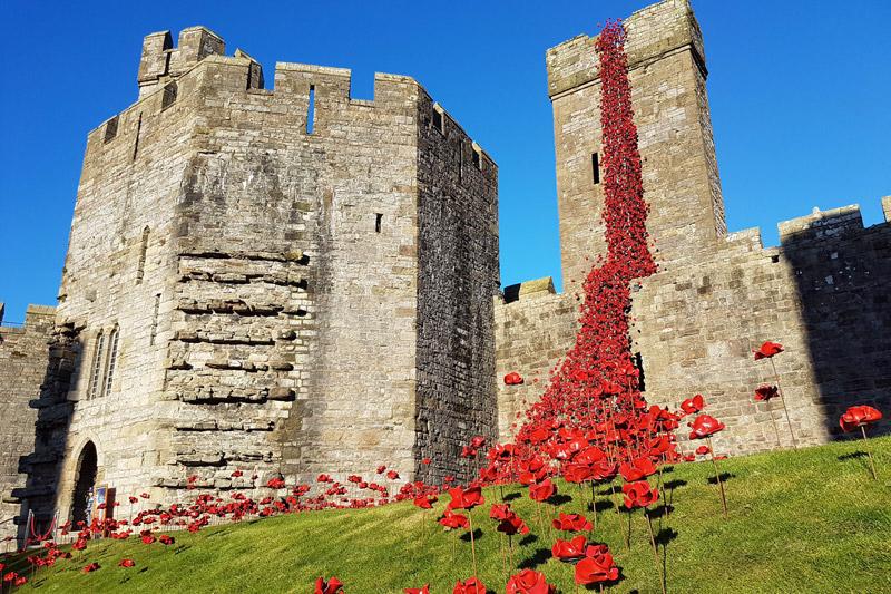 Weeping Window installation at Caernarfon Castle, Gwynedd