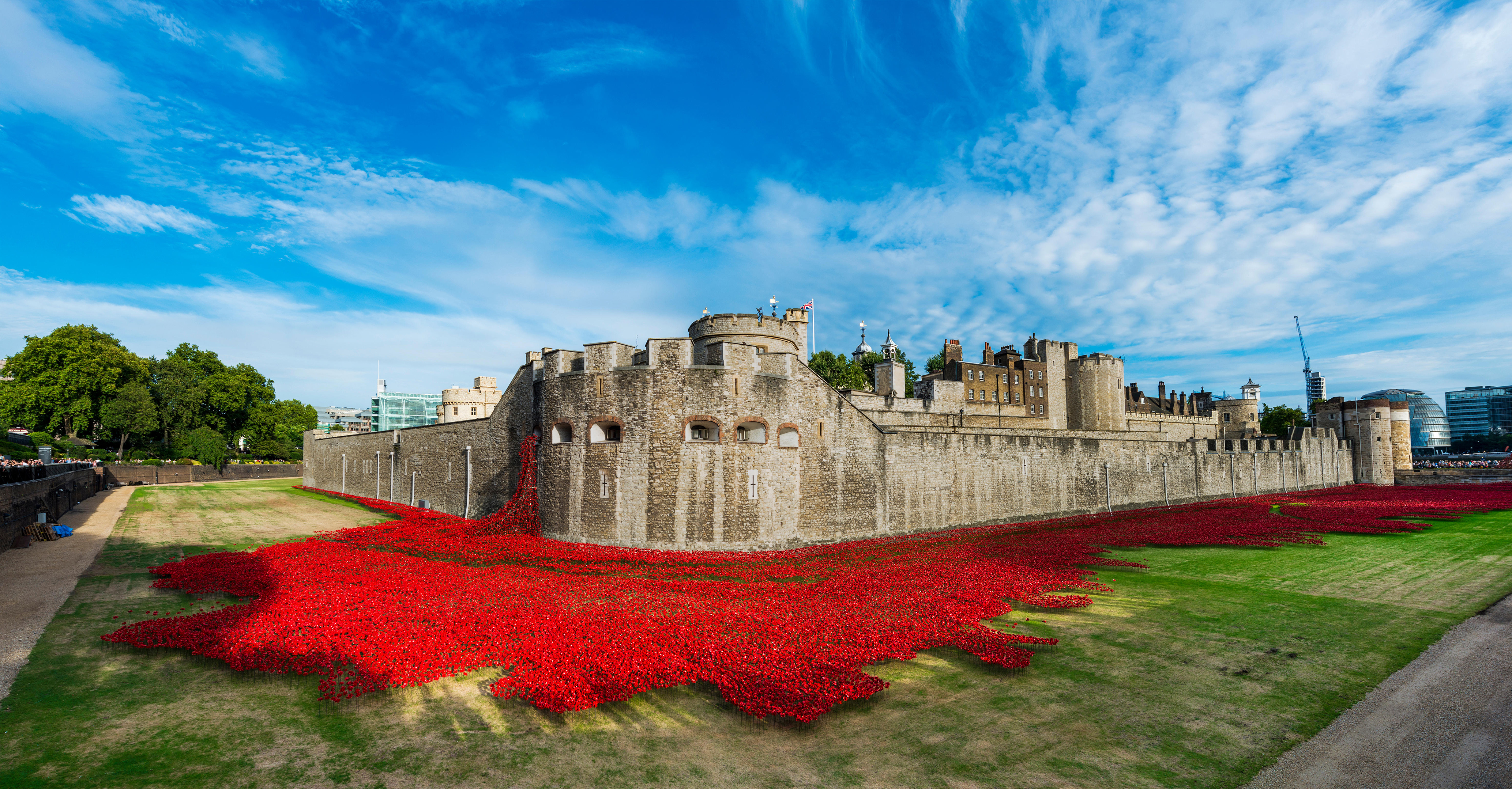 What Does The Poppy Stand For Discover Britain